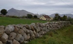 15 Agnes House View